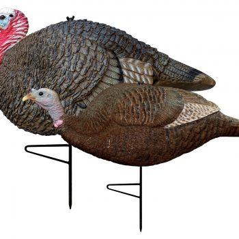 turkey hunting decoy