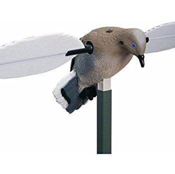 best dove hunting decoy