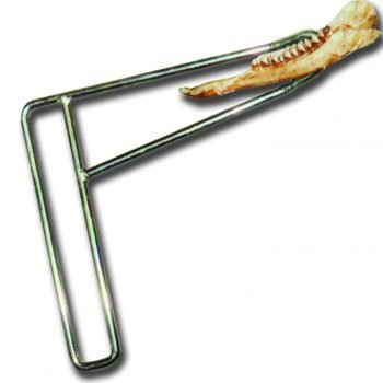 Deer Jaw Bone removal tool