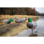 Waterfowl Decoy Sale at Cabela's