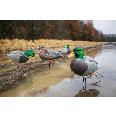 best duck decoy deal