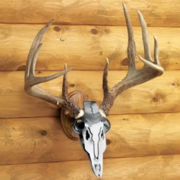 deer antler mounting kit DIY