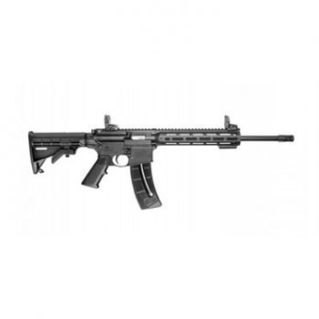 Smith and Wesson AR