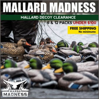 march madness deal
