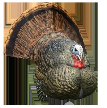 best deal avian decoy