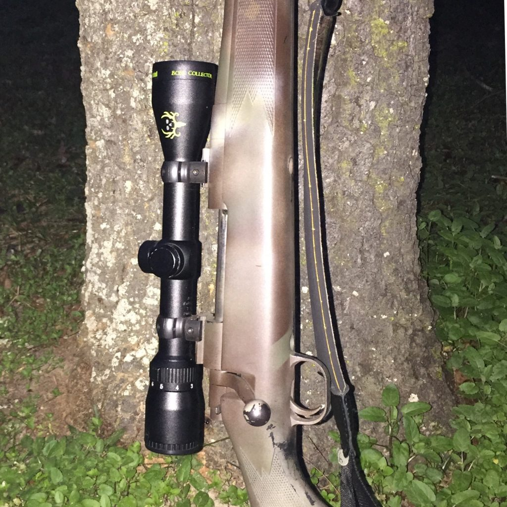 bushnell rifle scope review