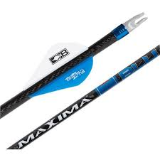 carbon express arrow best price