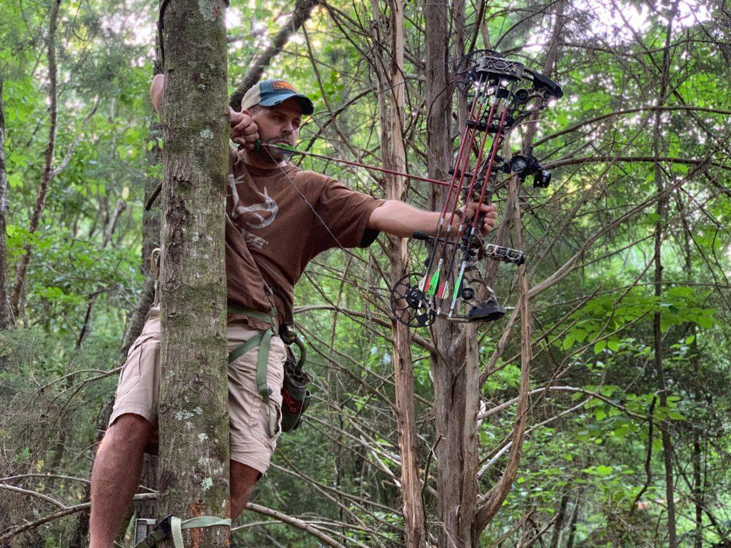 hunt 360-degrees around a tree