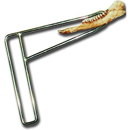 jaw bone removal tool