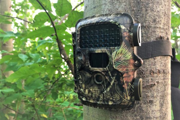 covert mp8 trail camera review