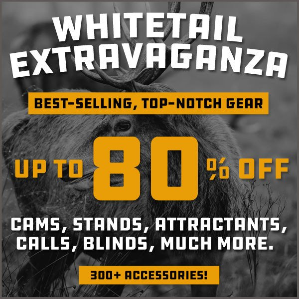 best deal whitetail gear