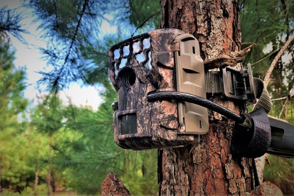 moultrie m8000i trail camera review