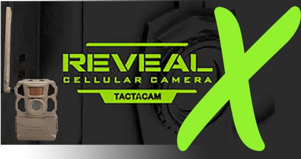 best price tactacam reveal x cell cam
