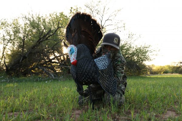 the best turkey reaping decoy